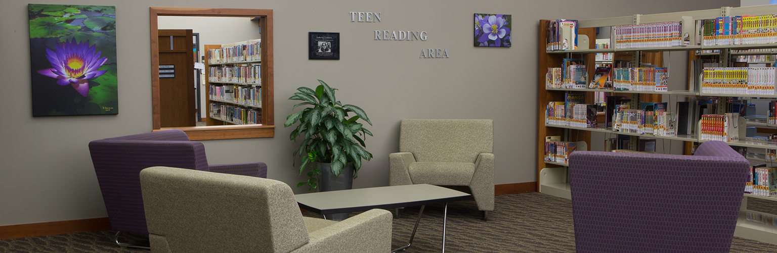 Teen Reading Area