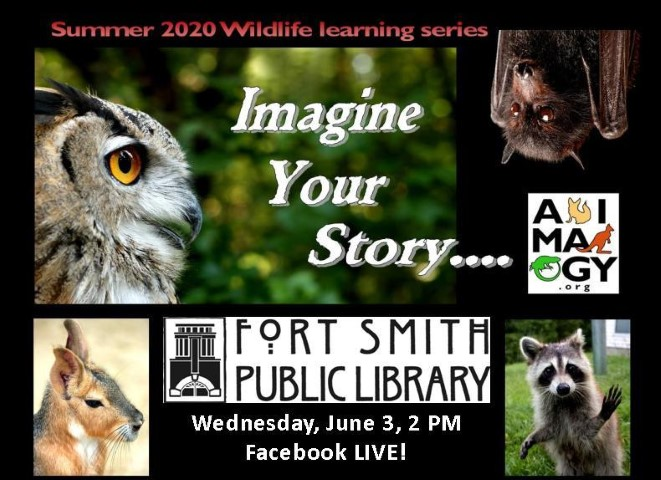 Imagine Your Story poster for Animalogy program