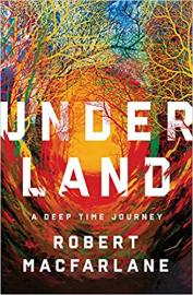 Cover image for Underland