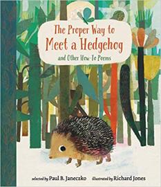 Cover image for The Proper Way to Meet a Hedgehog and Other How-to Poems