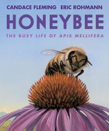 Cover image for Honeybee