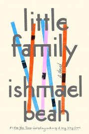 Cover image for Little Family