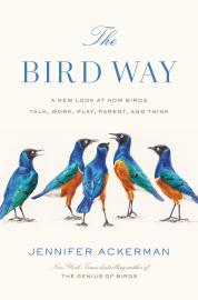 Cover image for The Bird Way