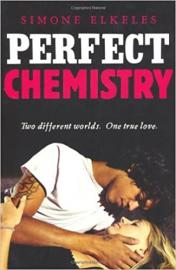 Cover image for Perfect Chemistry