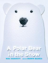 Cover image for A Polar Bear in the Snow