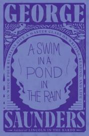Cover image for A Swim in a Pond in the Rain
