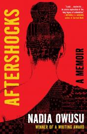 Cover image for Aftershocks