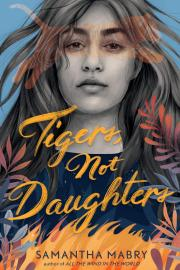 Cover image for Tigers Not Daughters